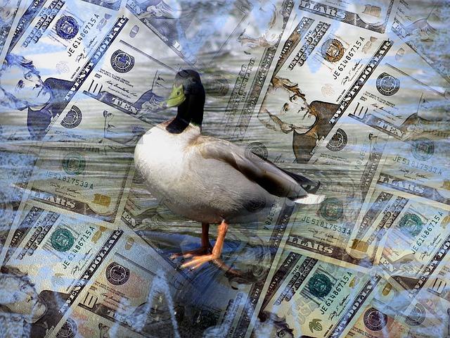 kachna stojící na penězích